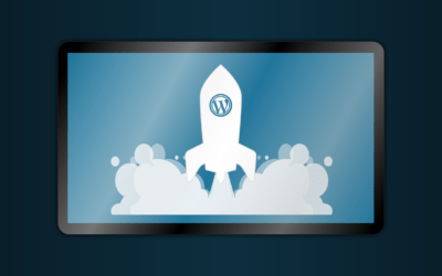 Can You Really Make Money With WordPress Skills?